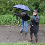 Birdwatching in the rain / pozorovanie vtákov v daždi - Ján Dobšovič