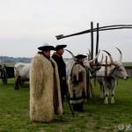 Hungarian grey cattle market / trh s dobytkom- Ján Dobšovič