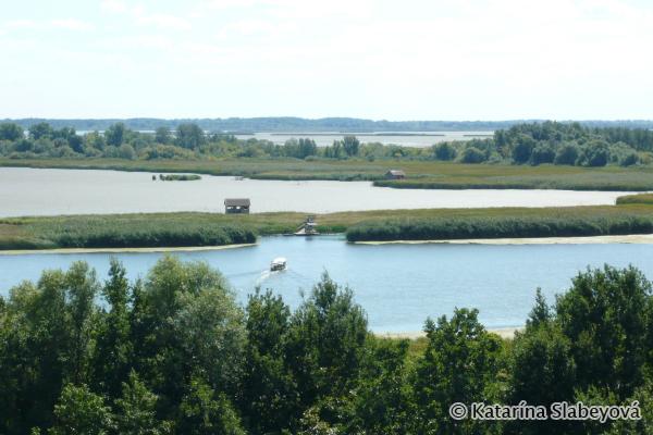 View on Lake Tisza / Výhľad na jazero Tisa