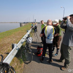 bike birders / birdwatcheri na bicykloch